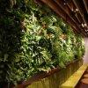 遊園地のオフィスの装飾の人工的な緑プラント壁
