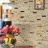 Matériaux de construction Natual Stone Marble Mosaic (FYSD070)