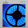 Striscia molle impermeabile di approvazione LED del CE (SL-F1226B30)