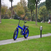 Vélo se pliant électrique avec le pneu de 20inch Kenda