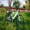 велосипед спрятанный 26inch батареи электрический Rseb-303