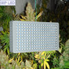 Greenhouse Flowering를 위한 900W 1000W Double Chips LED Grow Light