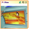 Display를 위한 LED Backlit Ultra Slim Advertisement Light Box