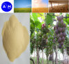 O ácido aminado da fonte da planta Hydrolysed o ácido aminado livre elevado de 80%