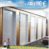 Piel de la puerta de HDF/piel moldeada de la puerta (NTE-HD5001)