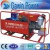 8kw GF1 scelgono - il gruppo elettrogeno diesel di serie raffreddata ad acqua del cilindro