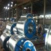 Heiße eingetauchte galvanisierte Stahl-Ringe mit hoher Zink-Beschichtung