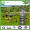 Lower Price를 가진 경첩 Joint Galvanized Farm Fence