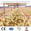 2017 vertentes para a exploração avícola