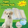 Incontinence urinaire adulte Underpads de Dog Chux pour Pet (6060-5)