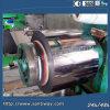 La couleur a enduit la bobine en acier galvanisée PPGI