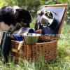 Eco-Friendly прямоугольная испаренная корзина пикника вербы