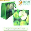 Sac non tissé de poignée d'achats de tissu d'impression de stratification (KXJS157)