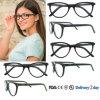 Frame Handmade dos Eyeglasses do desenhador de Eyewear do acetato dos frames populares dos Eyeglasses