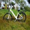 Bicicleta clássica de E para a excursão da cidade e do parque