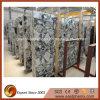 Grandes brames de marbre grises chinoises normales pour la salle de bains de dessus de vanité