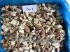 Boletus neuf/Procini de la collecte IQF/Frozen de Yunnan