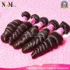 Hair bello Peruvian Loose Wave con Free Shipping