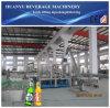 Machine de petite capacité de production de bière