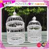 La gabbia decorativa del fiore, Metal le gabbie di uccello decorative, lanterna decorativa della candela