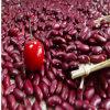 Escuro - tipo britânico vermelho dos feijões-roxos, para feijões-roxos vermelhos enlatados