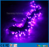100 diodo emissor de luz Fairy Lights Wedding Decoration Strings Purple Color 10m