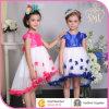 Robe chaude de fille de fleur de vente, robe d'usage de partie d'enfants