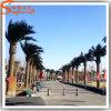 Palmeira artificial plástica ao ar livre da data do projeto distintivo