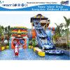 Escorrega de Água e Equipamentos Water Park engraçado para miúdos (HD-6901)