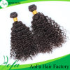 Capelli ricci naturali del Virgin dei capelli umani dei bei capelli africani