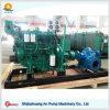 Motor Diesel - bomba de água conduzida da irrigação