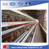un Type Poultry Layer Chicken Cage