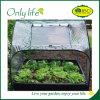Plegables plegables cuadrados de Onlylife crecen el mini invernadero del túnel