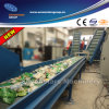 Pet Bottle Washing Line / Plastic Washing Machine