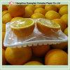 Food Packing를 위한 PVC Cling Film