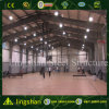 Здание спортивной площадки стальной структуры низкой стоимости Китая Prefab