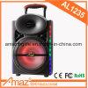 12inch nachladbarer Bluetooth beweglicher Lautsprecher von Kvg
