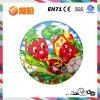 Pvc Inflatable Printing Ball voor Play en Sports (YY14-140)