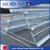 Migliori gabbie di strato dell'uovo del pollo di vendita di Jfa4120 Sudafrica