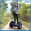 2014 neuer Rad-Selbstbalancierender RollerF3 des Chariot-zwei