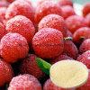 Grado farmaceutico Myricitrin CAS dell'estratto naturale del Bayberry: 17912-87-7