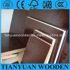 Triplex van de Kern van de eucalyptus het Onder ogen gezien/van de Kern van de Berk Core/Hardwood Film