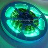 LED 가동 가능한 지구 (JY-LST-E60W5-2)