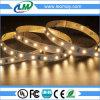 IP20 luz de tira de interior de la luz el 12W/M SMD2835 LED