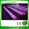 Lumière de barre d'étape d'IG-LED