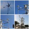 Fábrica Supply de Wind Solar Hybrid System para Camera