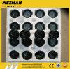 Sdlg LG936 LG938LG956 LG968 바퀴 로더 예비 품목 엔진 수온 측량기 Sw201c 4130000289