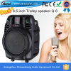 6.5-duim Portable Plastic Active Speaker Bluetooth met USB Interface