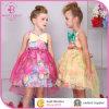 De Kinderen die van de manier zich met het Meisje van de Prinses van de Zomer van de Chiffon Bowknot/kleden kleden zich
