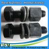 Boulon à haute résistance/boulon pour la structure métallique/boulon de cisaillement de torsion